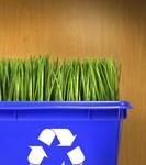 Recycler ses déchets pour faire des économies
